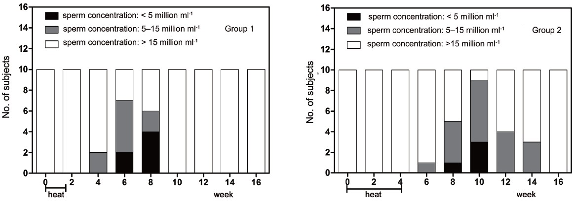 Effect Of Transient Scrotal Hyperthermia On Sperm Parameters