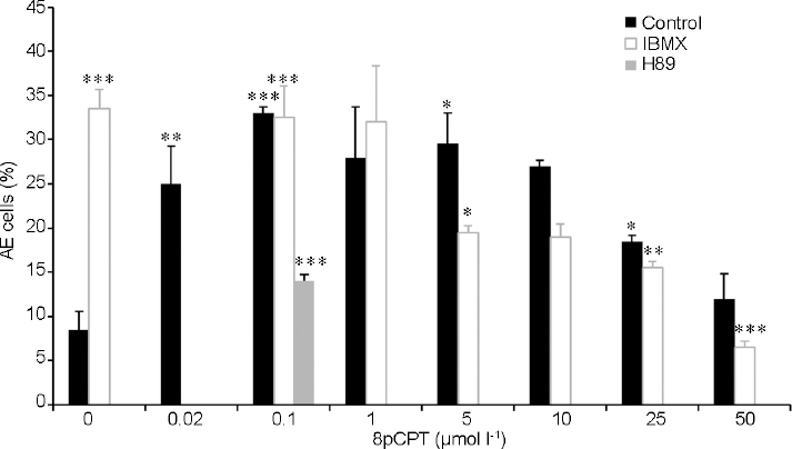 Figure 2: The effect of 8-(4-Chlorophenylthio)-2'-O-methyladenosine-3',5'-cyclic (8pCPT) on AE induced by protein kinase A inhibition. After 160 min of incubation (Control), various concentrations of 8pCPT were added and then 50 μmol l<sup>−1</sup> N-[2-(p-bromocinnamylamino)ethyl]-5isoquinolinesulfonamide (H89) or 0.5 mmol l<sup>−1</sup> 1-methyl-3-isobutylxanthine (IBMX) were added. The values represent the mean ± standard deviation of duplicates from three experiments from three different donors.<sup>*</sup><i>P</i> < 0.05,<sup>**</sup><i>P</i> < 0.01, and<sup>***</sup><i>P</i> < 0.001, significant difference compared to the corresponding control. AE: acrosomal exocytosis.